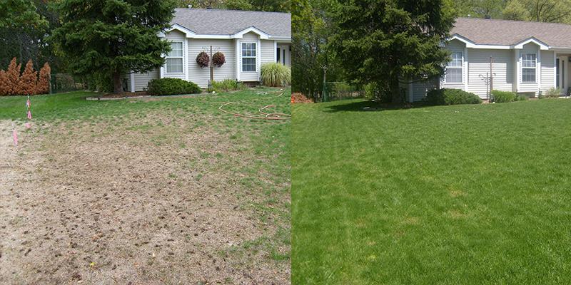 renowacja trawników Piła odnawianie trawy w Pile