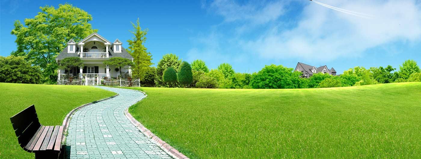 trawa Piła